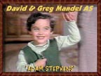 David and Greg Mandel as Adam Stephens (Bewitched)
